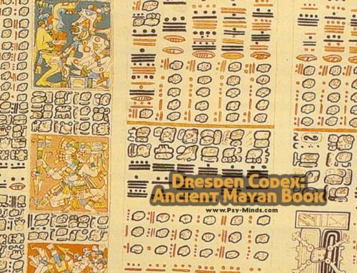 Dresden Codex: Ancient Mayan Book