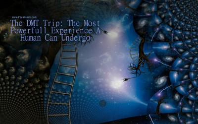 The DMT Trip The Most Powerfull Experience A Human Can Undergo