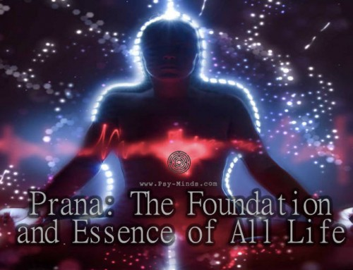 Prana: The Foundation and Essence of All Life