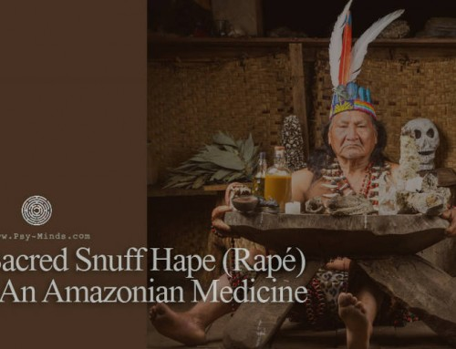 Sacred Snuff Hape (Rapé) – An Amazonian Medicine