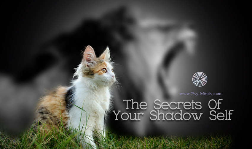 The Secrets Of Your Shadow Self