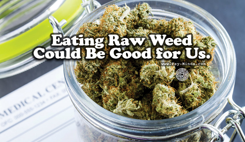 Eating Raw Weed Could Be Good for Us