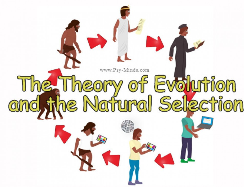 evolution and natural selection The scientist's articles tagged with: natural selection, evolution.