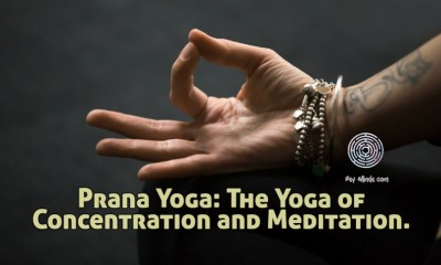 Prana Yoga The Yoga of Concentration and Meditation