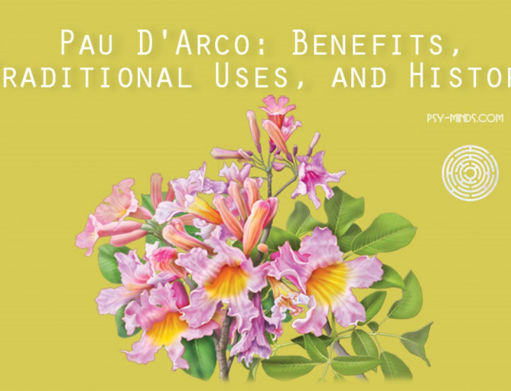 Pau D'Arco: Benefits, Traditional Uses, and History