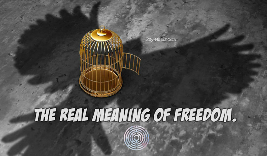 The Real Meaning Of Freedom