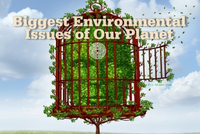 Biggest Environmental Issues of Our Planet 33