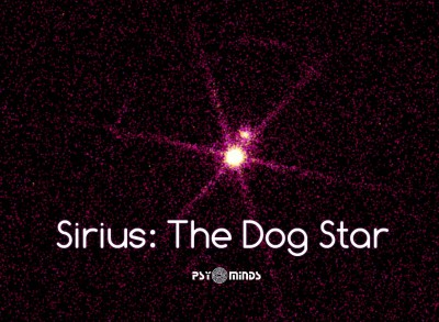 Sirius The Dog Star