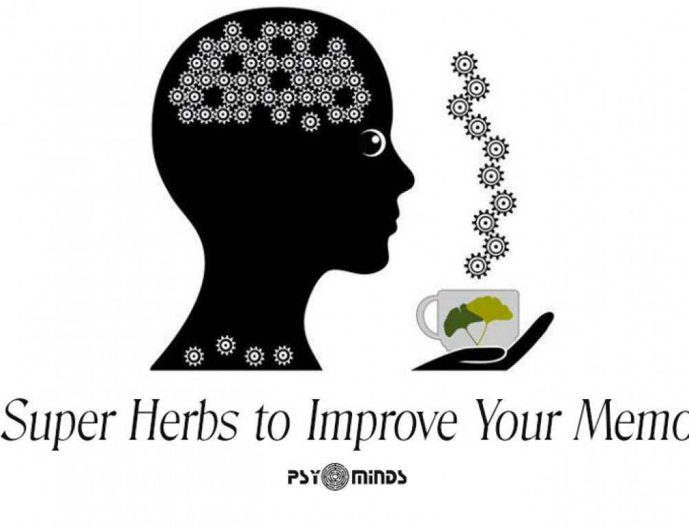 5 Super Herbs to Improve Your Memory