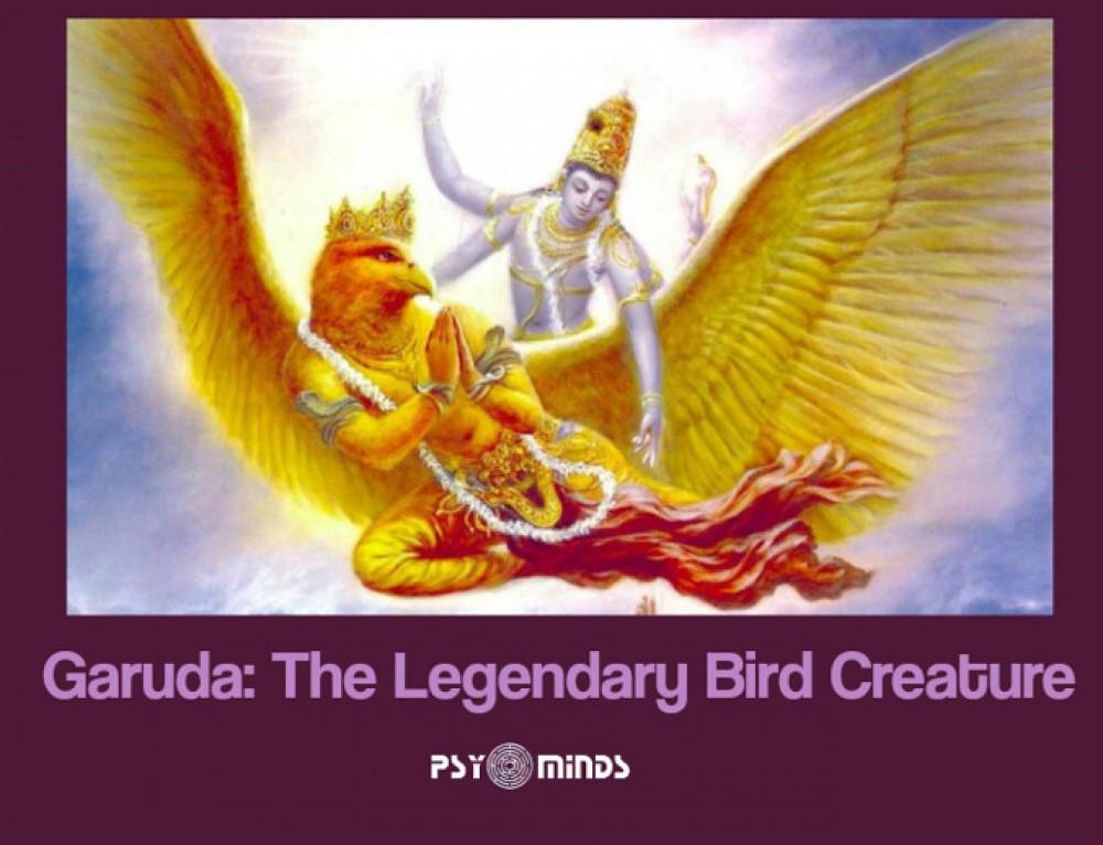 Garuda: The Legendary Bird Creature