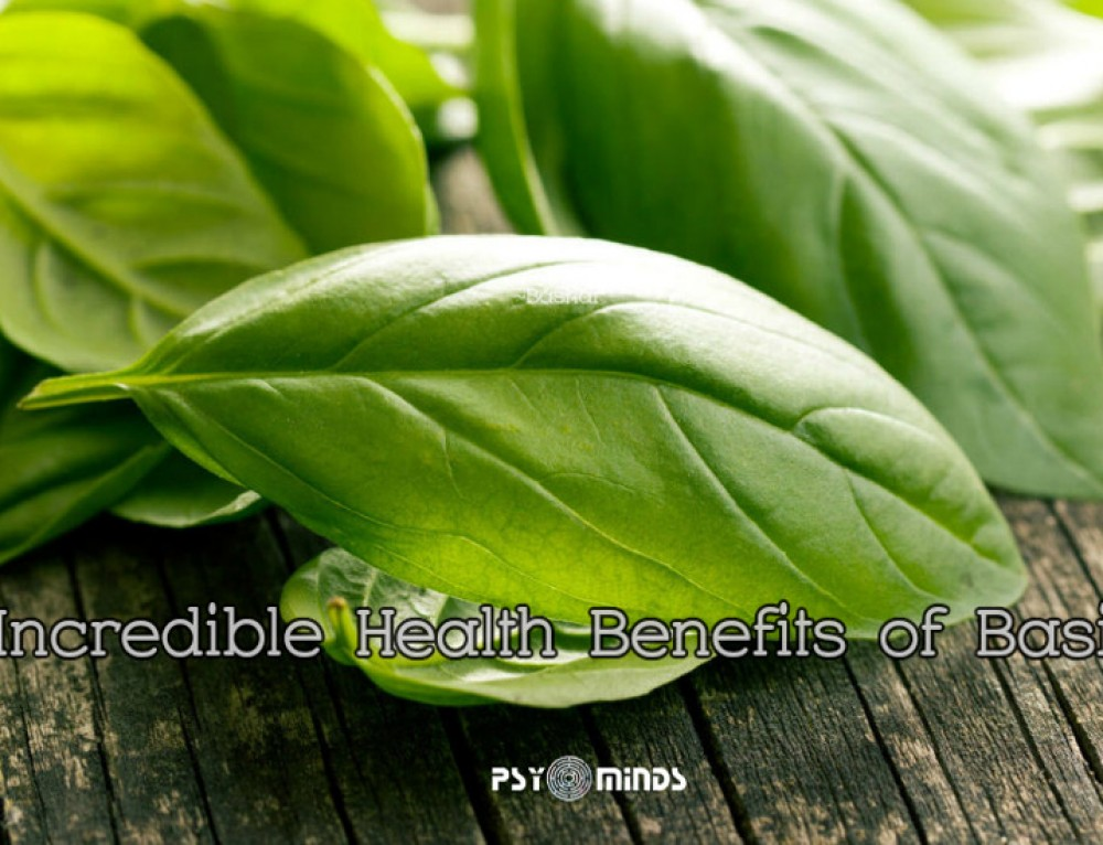 5 Incredible Health Benefits of Basil