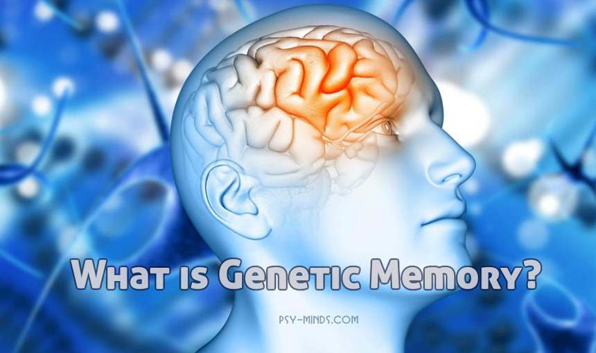 What is Genetic Memory
