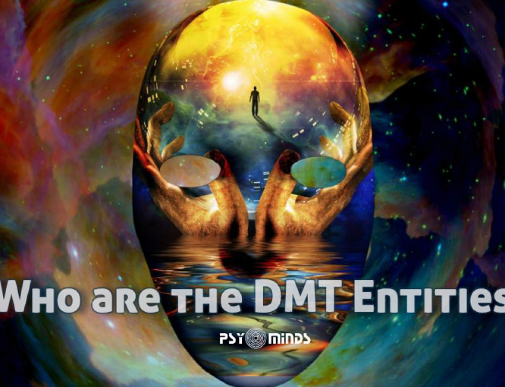 Who are the DMT Entities?