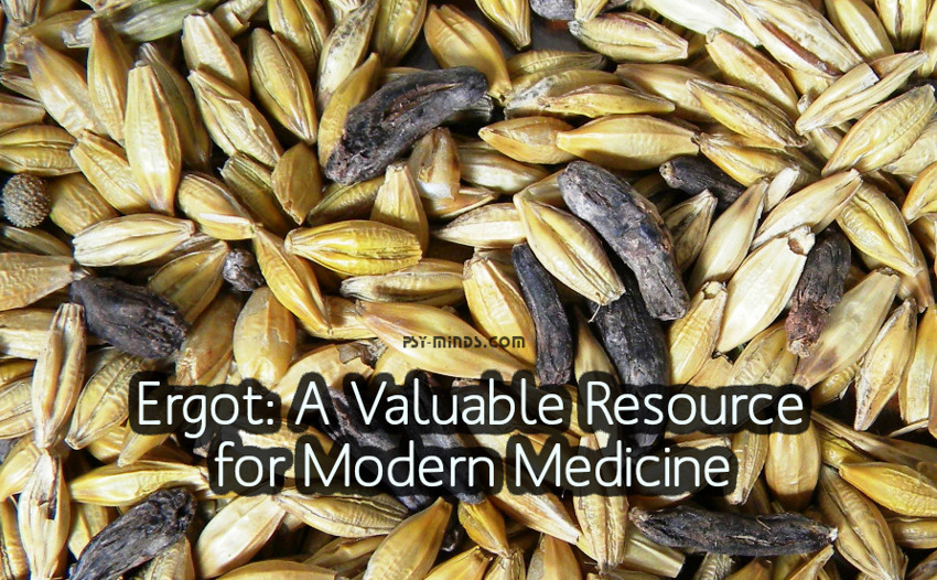 Ergot A Valuable Resource for Modern Medicine