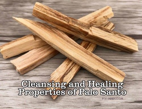 Cleansing and Healing Properties of Palo Santo