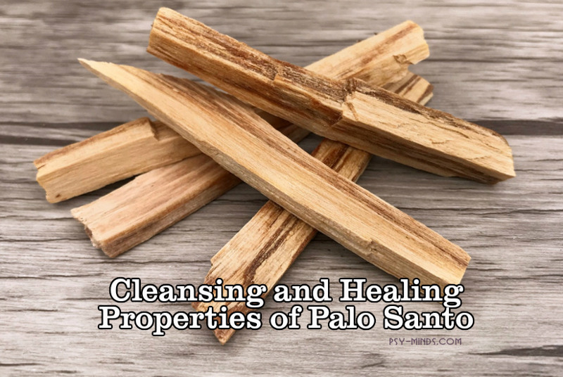 Cleansing and Healing Properties of Palo Santo 33