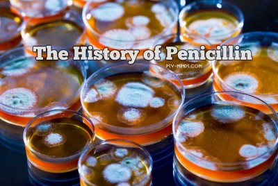 The History of Penicillin