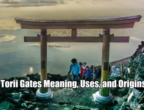 Torii Gates Meaning, Uses, and Origins