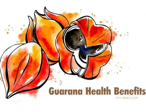 Guarana Health Benefits