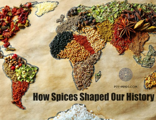 How Spices Shaped Our History