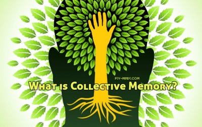What is Collective Memory