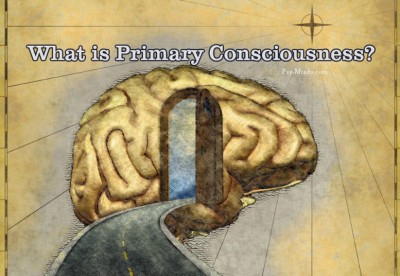 What is Primary Consciousness
