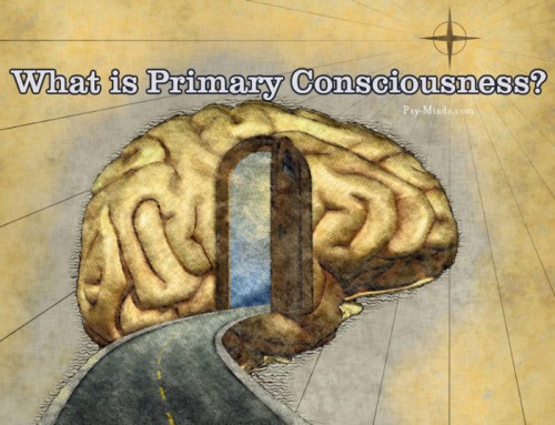What is Primary Consciousness?