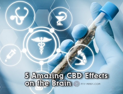 5 Amazing CBD Effects on the Brain
