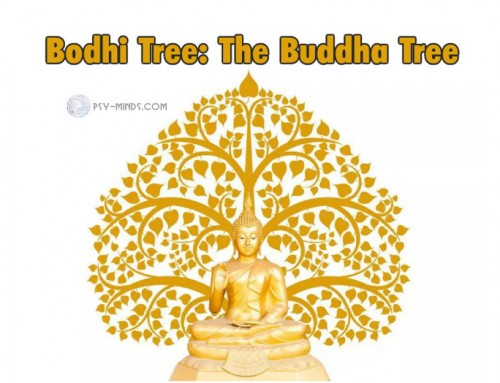 Bodhi Tree: The Buddha Tree