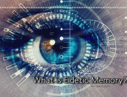 What is Eidetic Memory?