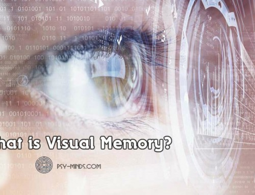 What is Visual Memory?