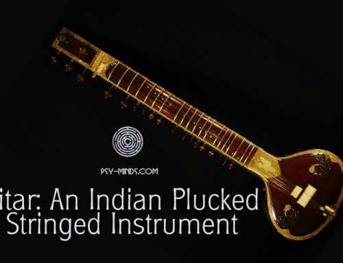 Sitar: An Indian Plucked Stringed Instrument