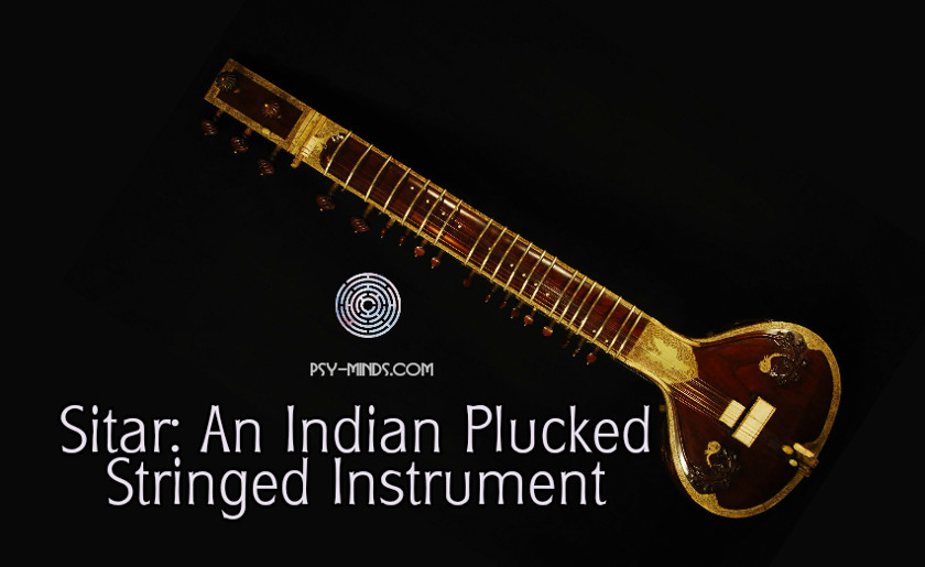 Sitar An Indian Plucked Stringed Instrument