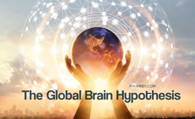 The Global Brain Hypothesis