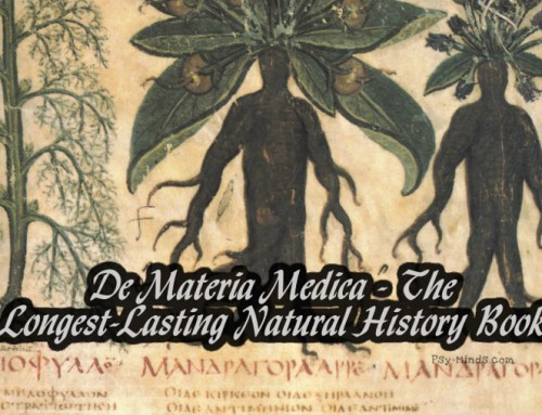 De Materia Medica – The Longest-Lasting Natural History Book