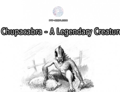 Chupacabra – A Legendary Creature