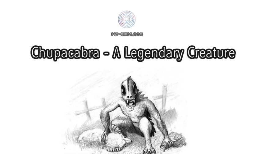 Chupacabra - A Legendary Creature