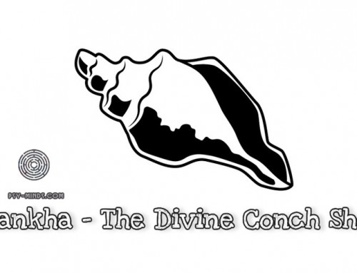Shankha – The Divine Conch Shell