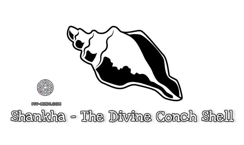 Shankha - The Divine Conch Shell
