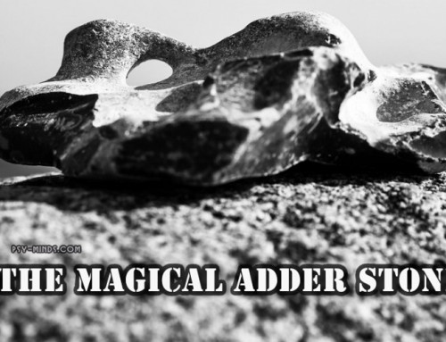 The Magical Adder Stone