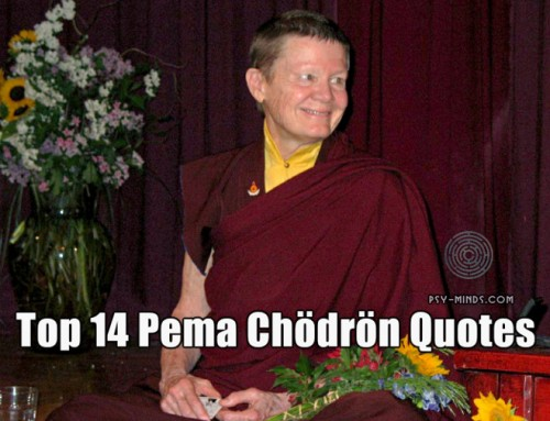 Top 14 Pema Chödrön Quotes