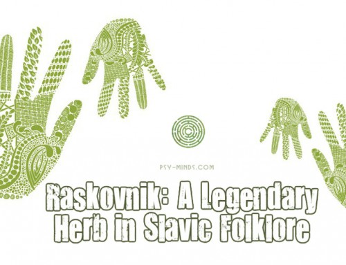 Raskovnik: A Legendary Herb in Slavic Folklore