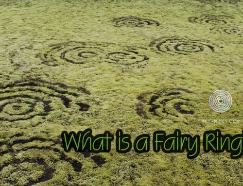 What is a Fairy Ring?