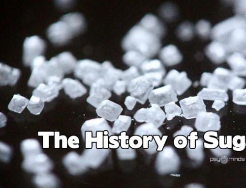 The History of Sugar